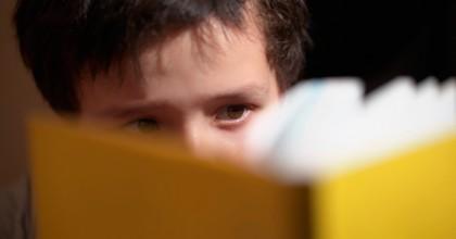 Fundación INTEGRA para la Discapacidad Intelectual